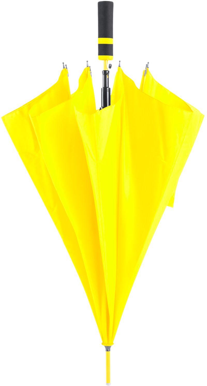 Cladok deštník