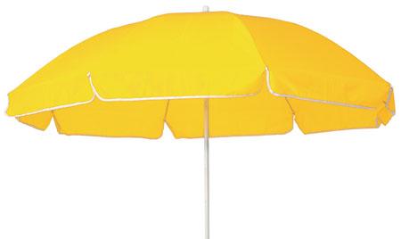 Slunečník žlutý
