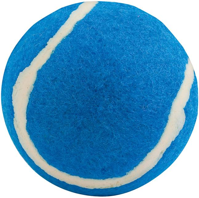 Modrý míček pro psy