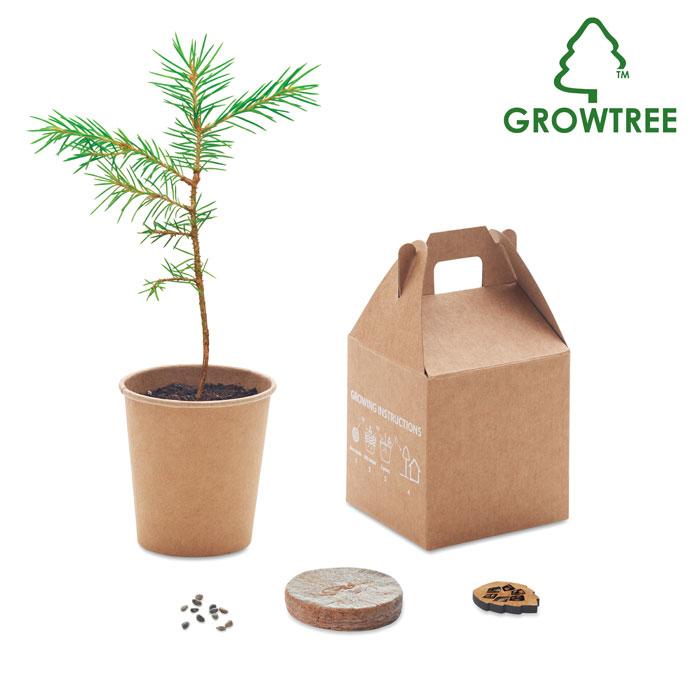 GROWTREE SET vyrobený z borovice