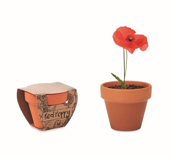 Terakotový květináč - mák