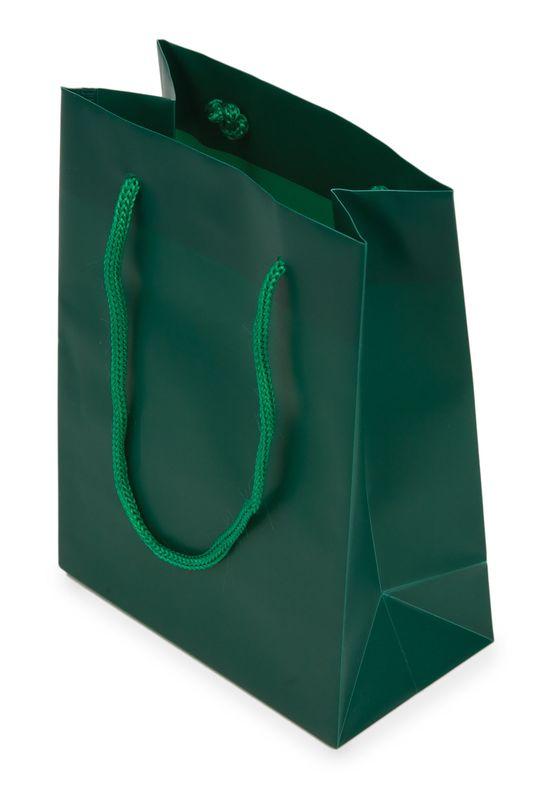 Dárková taška PVC zelená 12x16x6,5 cm