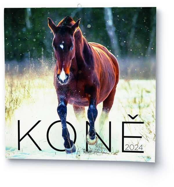 Nástěnný kalendář - Poznámkový - Koně