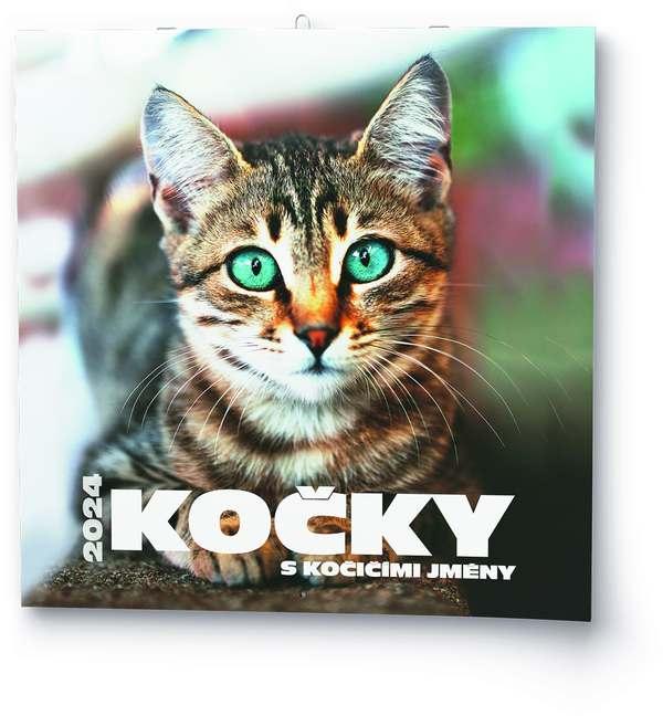 Nástěnný kalendář - Poznámkový - Kočky